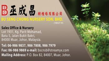 BU SENG CHONG NURSERY SDN BHD